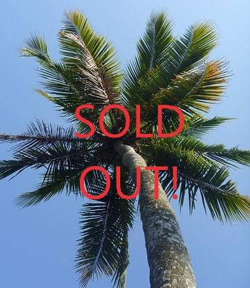 "Palm trees with ""SOLD OUT"" over image"
