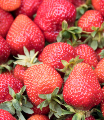 Image of a pile of fresh strawberries
